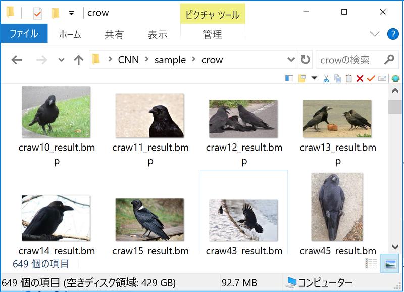 鳥画像のサンプルの一例(カラス)