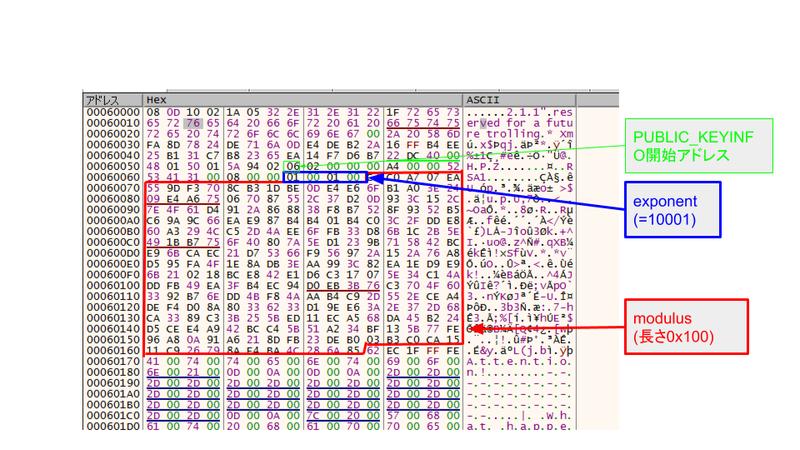 図 11. 暗号化に使用された RSA 公開鍵