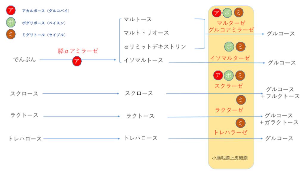 f:id:FMyakuzaishi:20171220180938p:image