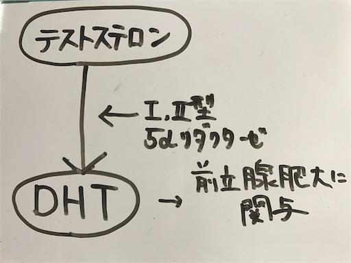f:id:FMyakuzaishi:20180522010922j:image
