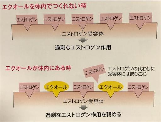 f:id:FMyakuzaishi:20180604224515j:image