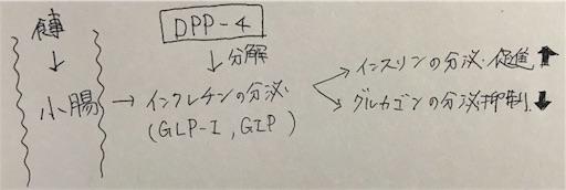 f:id:FMyakuzaishi:20180620003559j:image