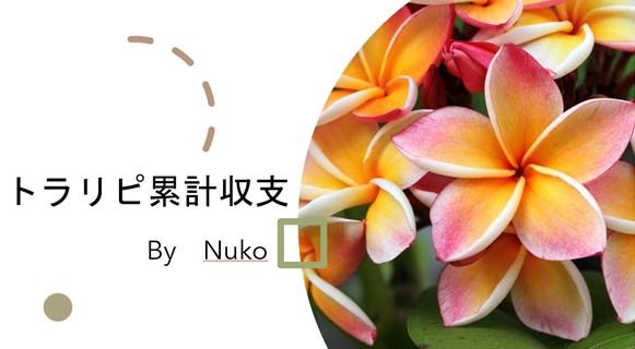 f:id:FX_Nuko:20200429095452j:plain