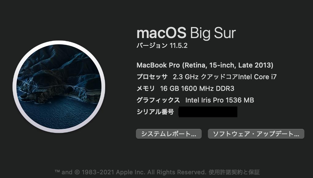 現在所有のMacBook Pro(2013年製)