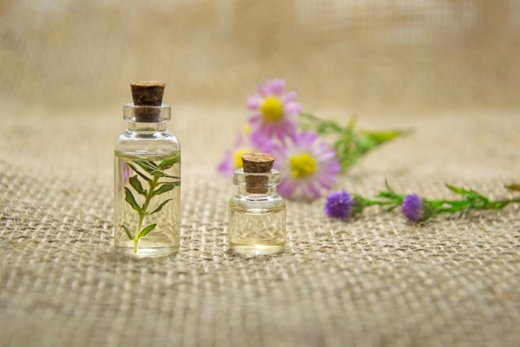 アロマテラピーのオイルと植物