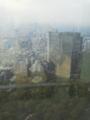 東京都庁展望台より