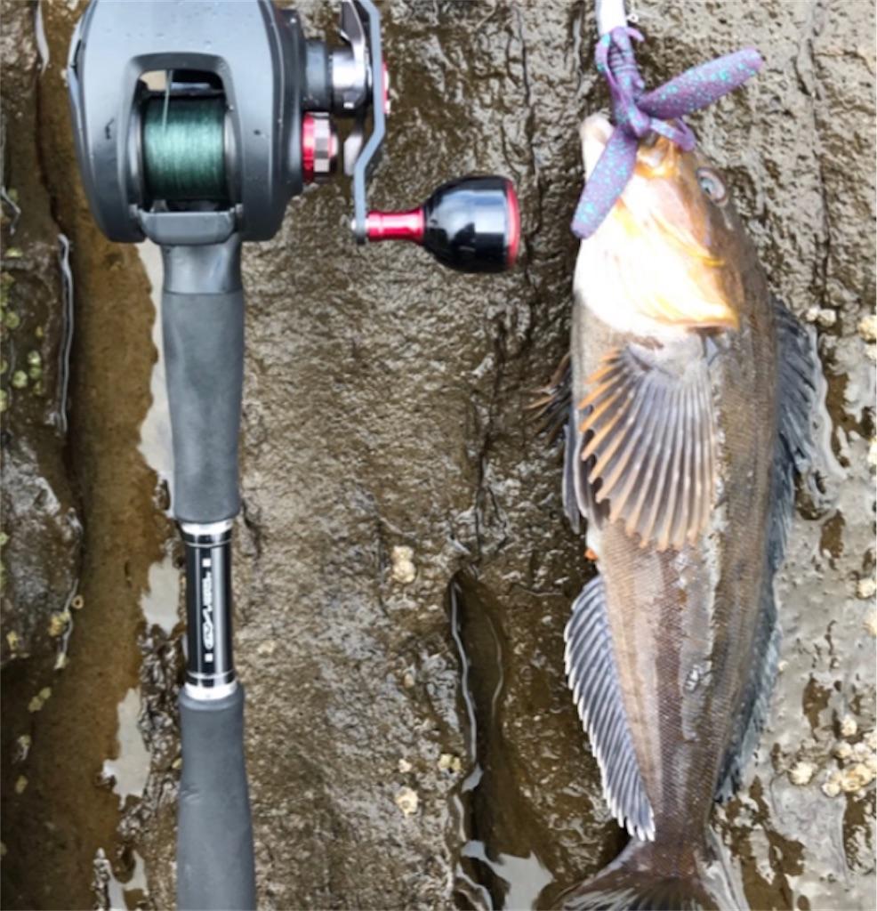 f:id:FishingLife:20200609104451j:plain