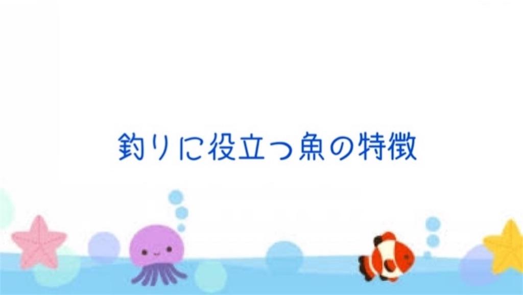 f:id:FishingLife:20200613150758j:image