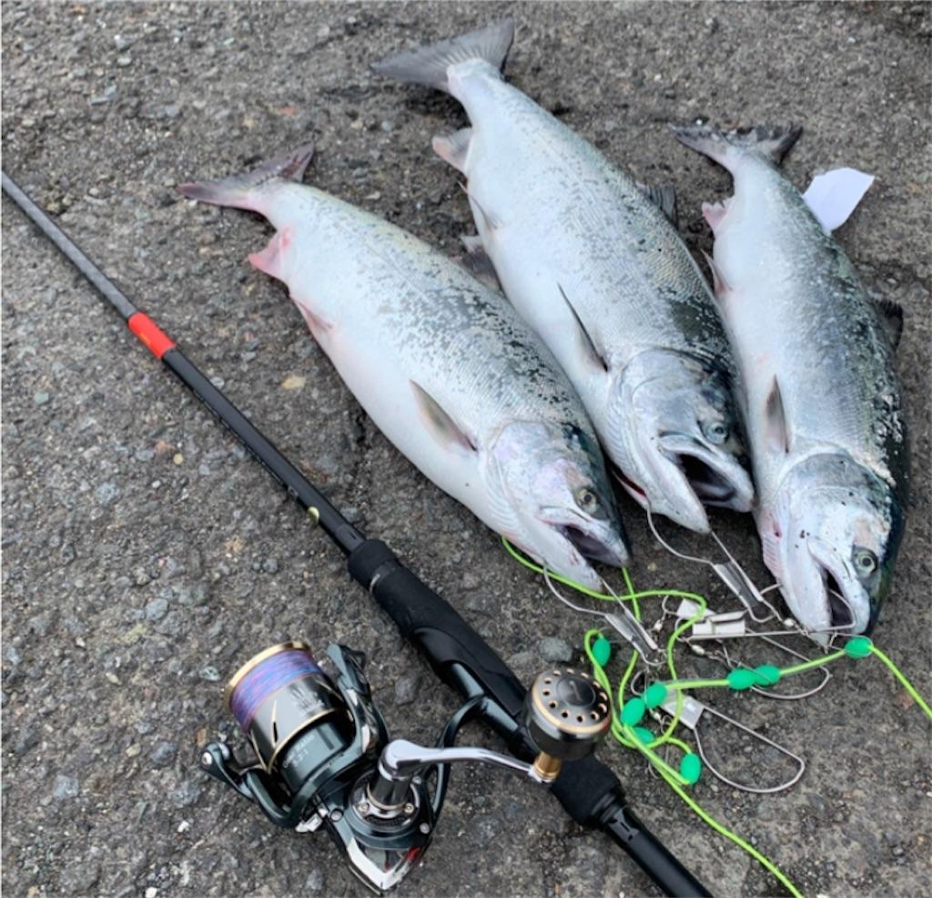 情報 北海道 釣り