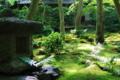 京都新聞写真コンテスト 祇王寺 緑の癒し