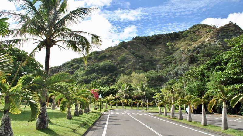 小笠原諸島の自然