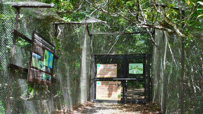 小笠原諸島の保護エリア