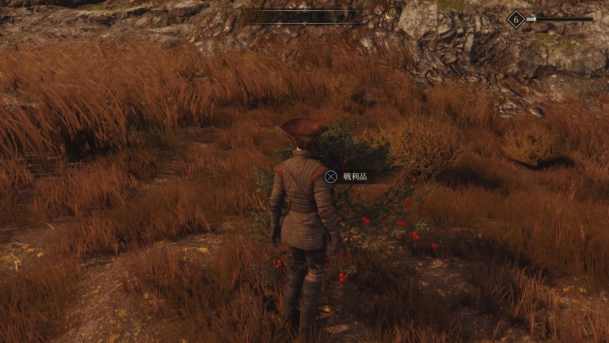グリードフォール採集草
