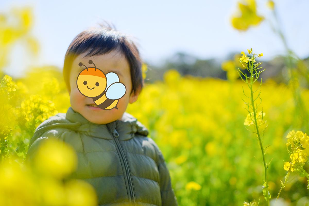 f:id:Fujinon_SoratoKodomo:20200224170143j:plain