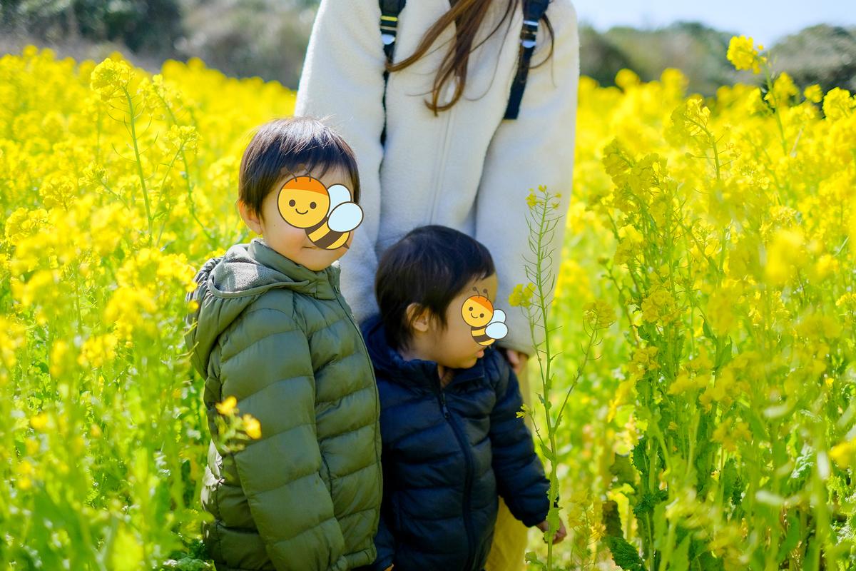 f:id:Fujinon_SoratoKodomo:20200224171153j:plain