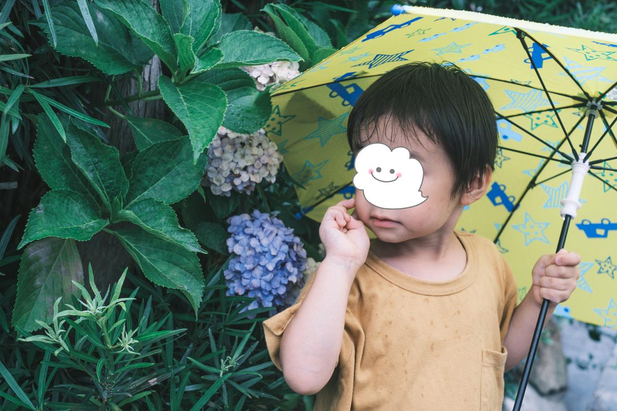 f:id:Fujinon_SoratoKodomo:20200705133817j:plain