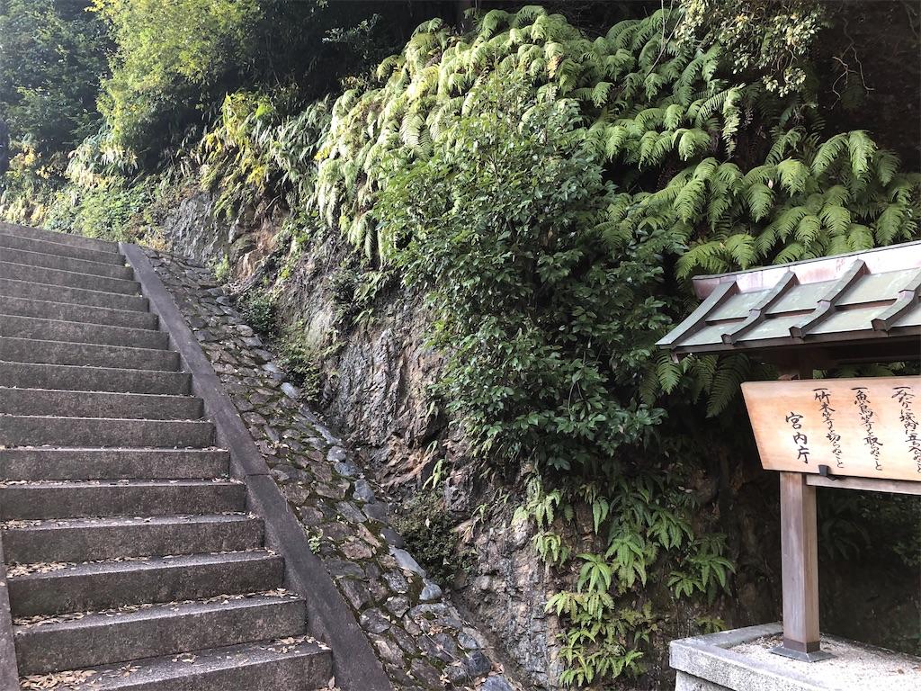 f:id:Fujisakiand:20200229151751j:image