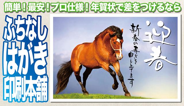 f:id:Fujisan-Nenga:20161029204549p:plain