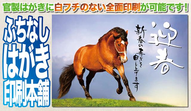 f:id:Fujisan-Nenga:20161029204625p:plain