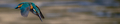 20190623014523