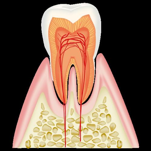 f:id:Fukumen-Dentist:20190323135022p:plain