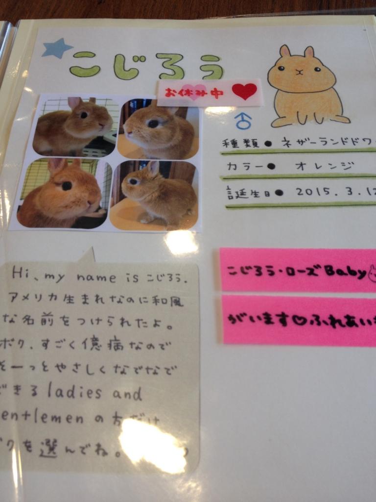 f:id:Fukuneko:20160711201725j:plain