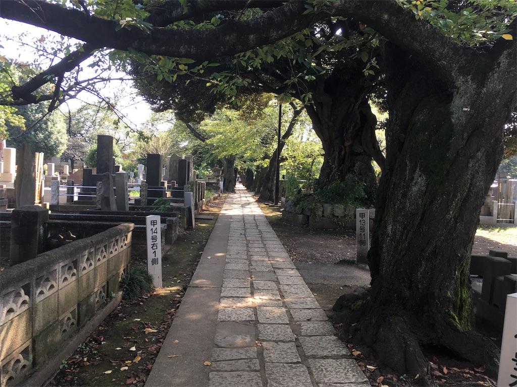 f:id:Fukuneko:20161003202243j:image