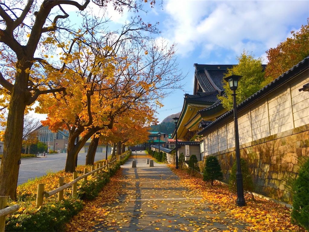 f:id:Fukuneko:20161114193126j:image