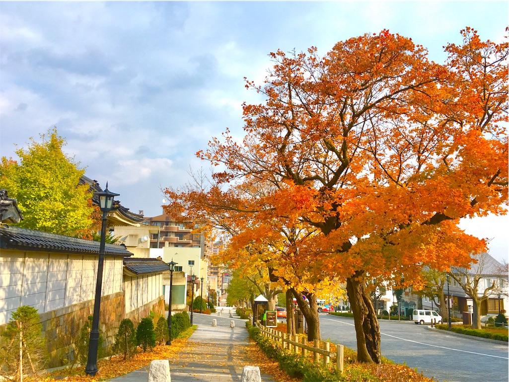f:id:Fukuneko:20161114193200j:image