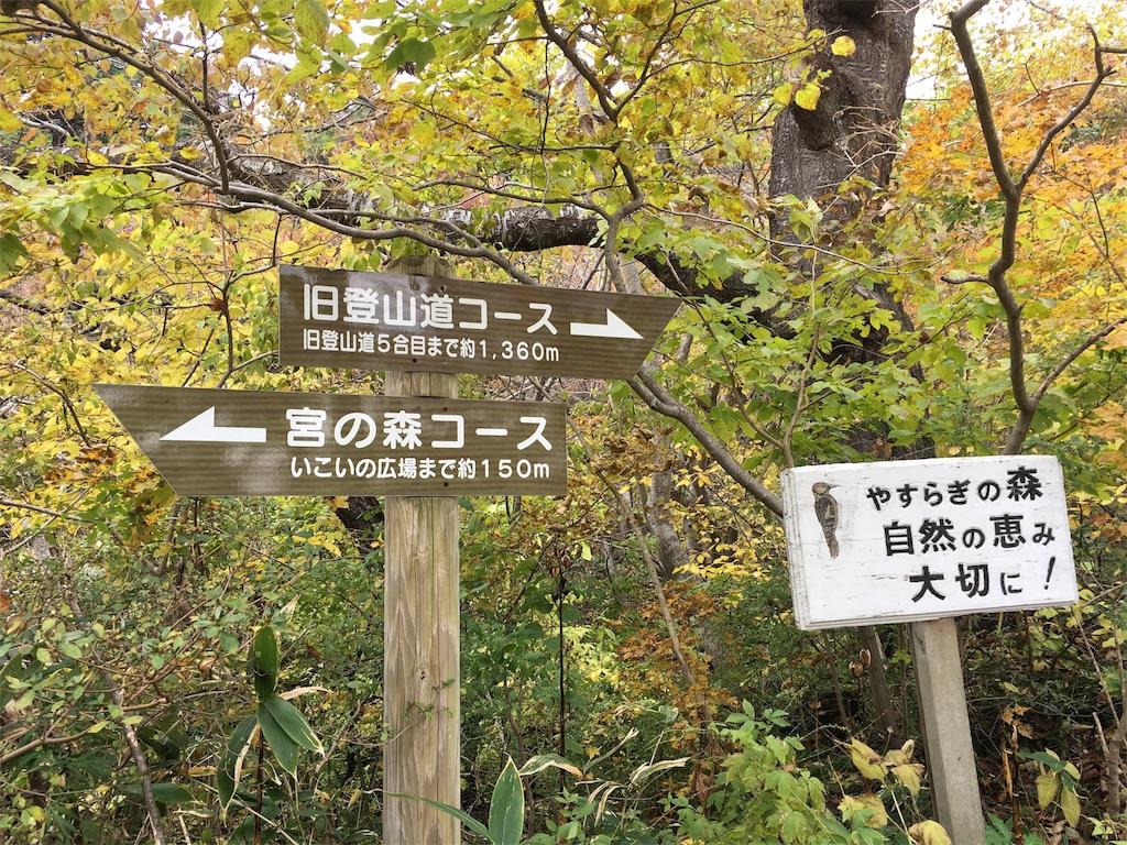 f:id:Fukuneko:20161114193431j:image