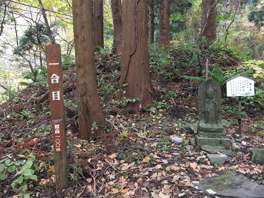f:id:Fukuneko:20161114193505j:image