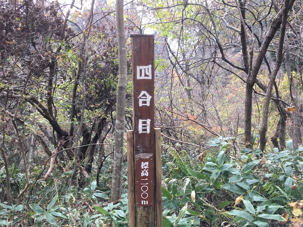 f:id:Fukuneko:20161114193612j:image