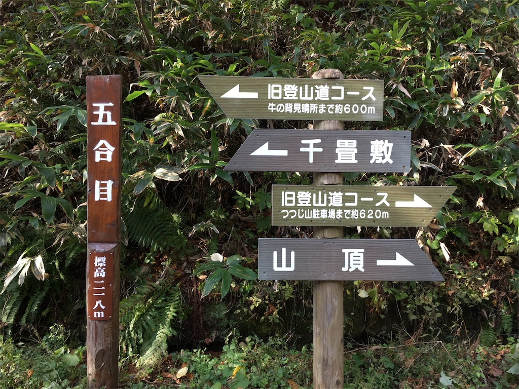 f:id:Fukuneko:20161114193633j:image