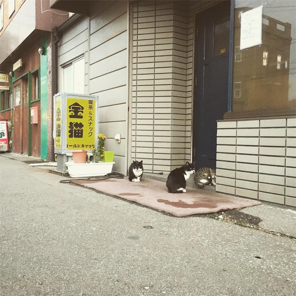 f:id:Fukuneko:20161213215704j:image