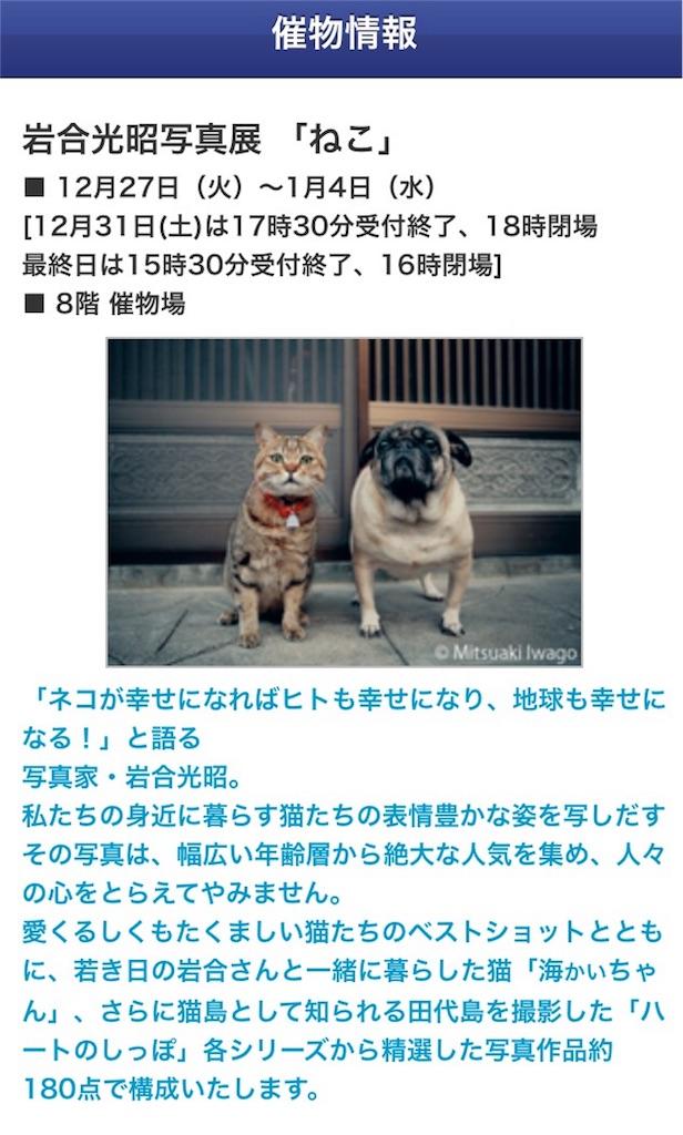 f:id:Fukuneko:20161230000129j:image