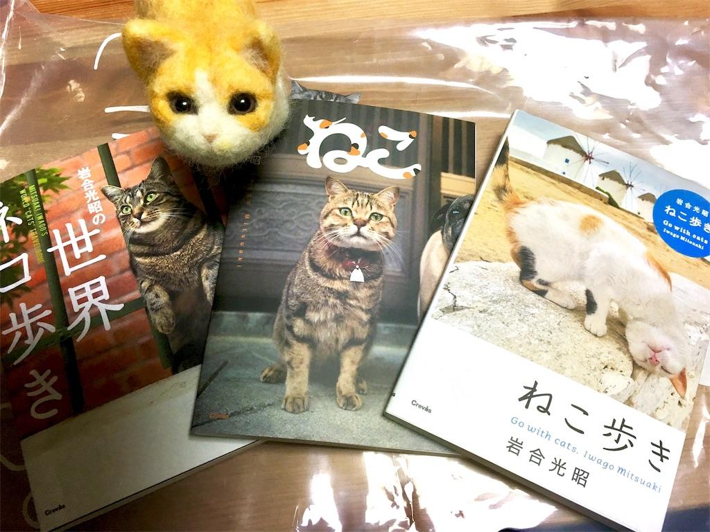 f:id:Fukuneko:20161230001718j:image