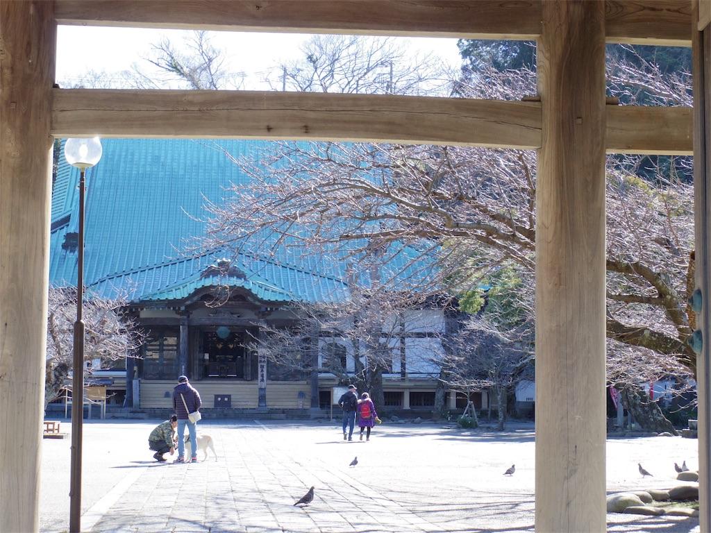 f:id:Fukuneko:20170214213153j:image