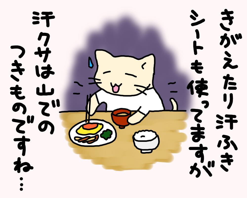 f:id:Fukuneko:20170403220759p:plain
