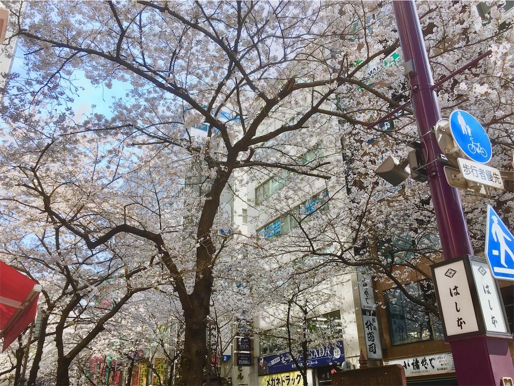 f:id:Fukuneko:20170405150741j:image