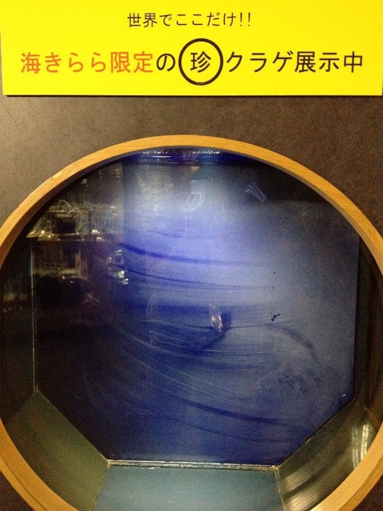 f:id:Fukuneko:20170423120828j:image