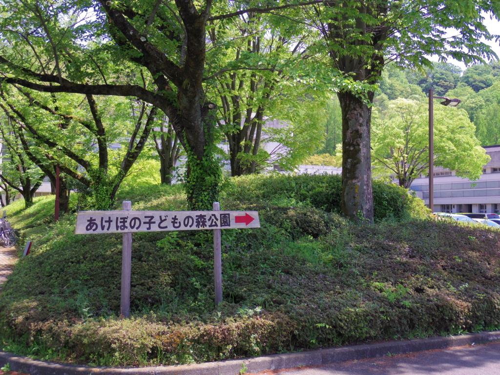 f:id:Fukuneko:20170501213051j:plain