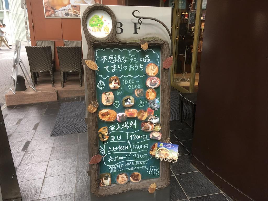 f:id:Fukuneko:20170607173402j:image