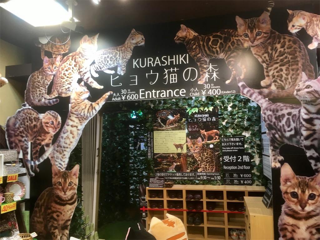f:id:Fukuneko:20170618131351j:image