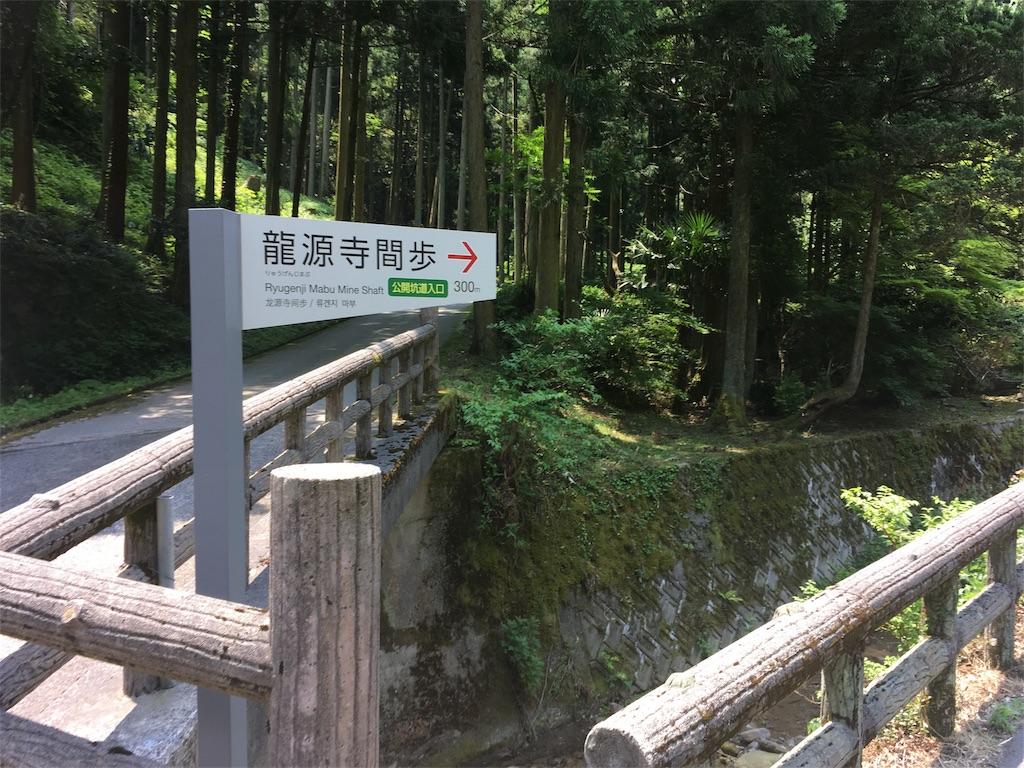 f:id:Fukuneko:20170619072208j:image