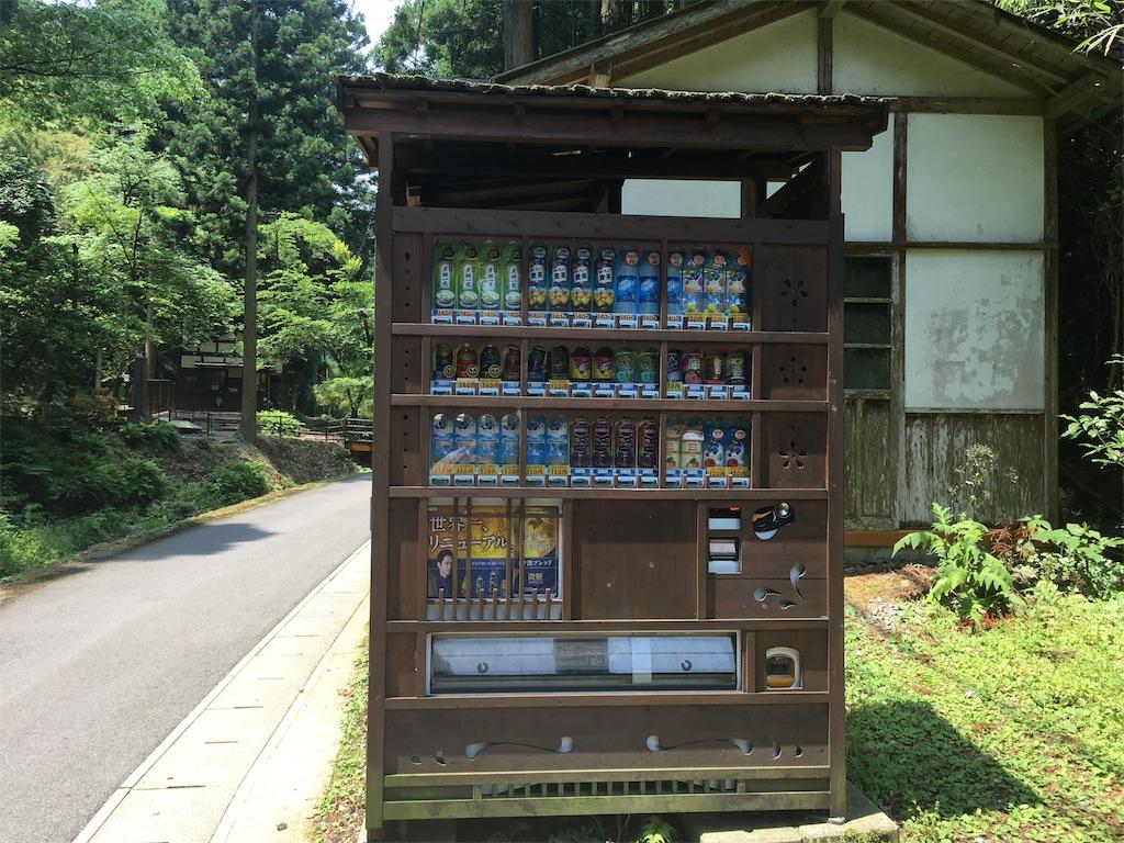 f:id:Fukuneko:20170619072236j:image