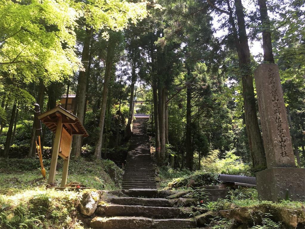 f:id:Fukuneko:20170619073516j:image