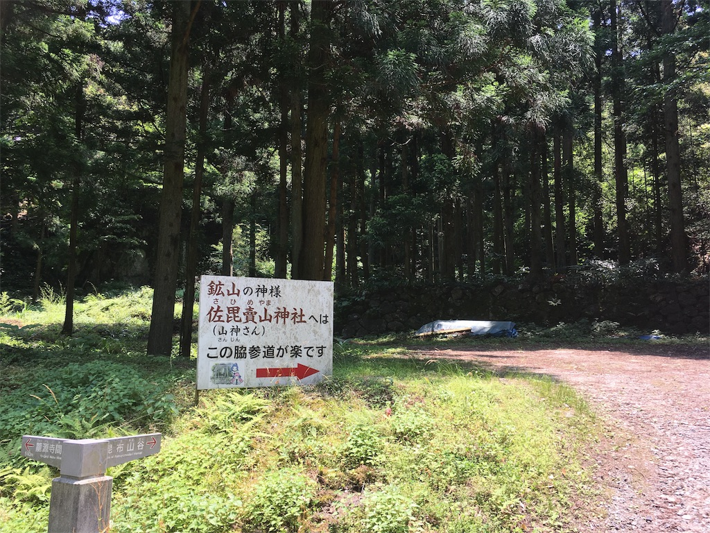 f:id:Fukuneko:20170619073520j:image