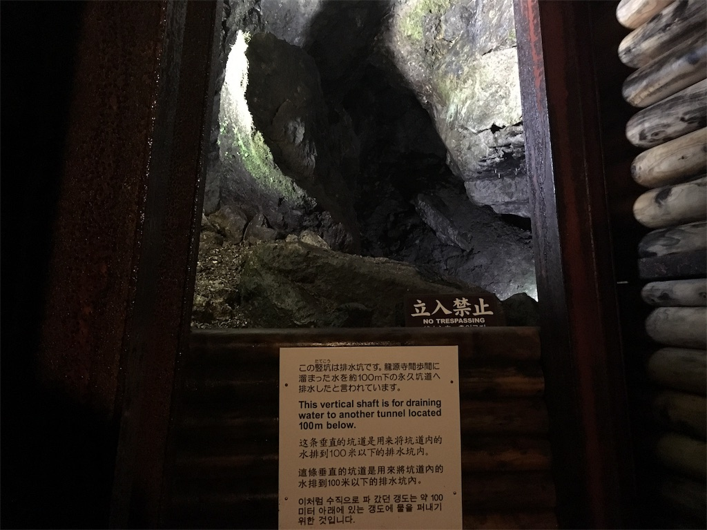 f:id:Fukuneko:20170619073831j:image