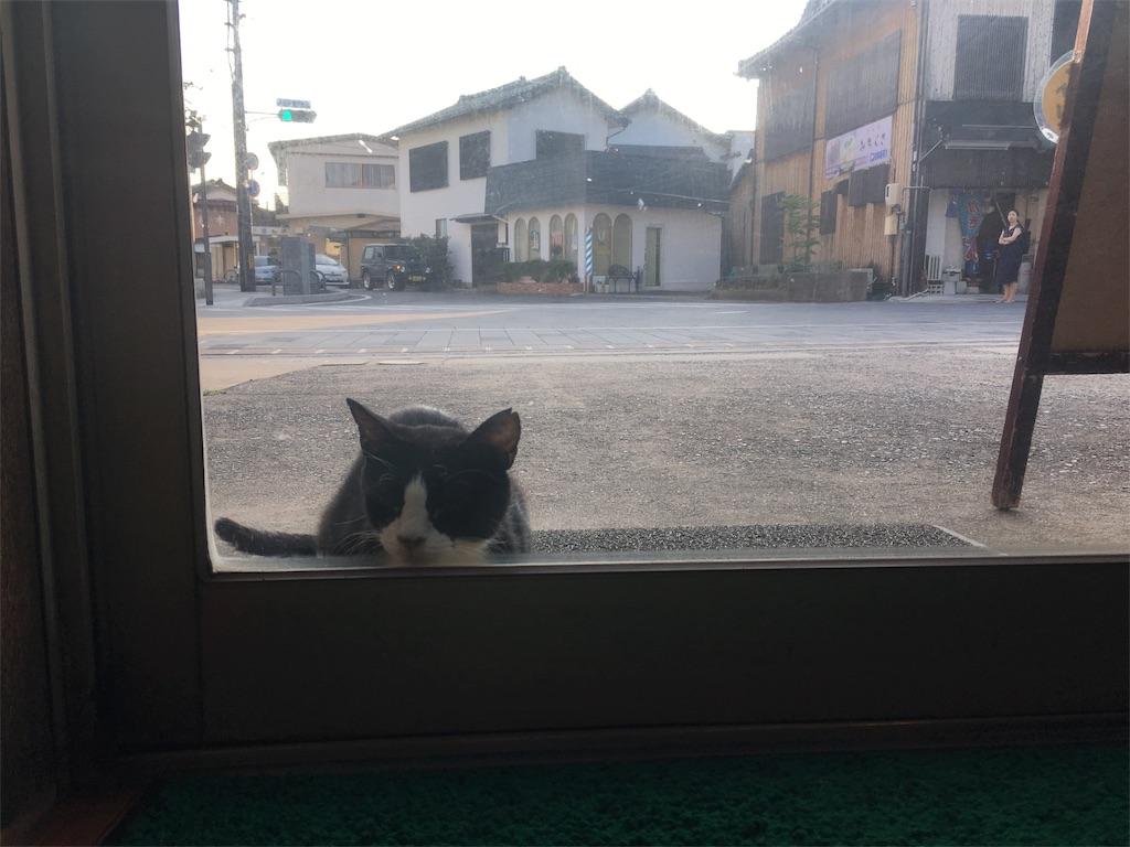 f:id:Fukuneko:20170619075653j:image