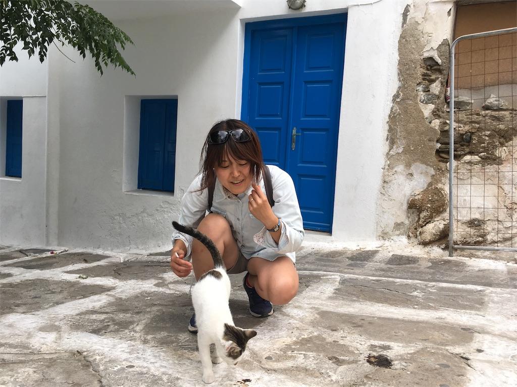 f:id:Fukuneko:20171010210708j:image